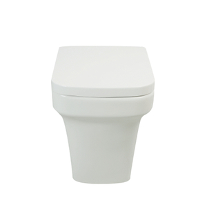 Back To Wall Toilet--CB9918
