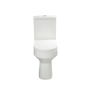 Wash Down Toilet --SD601H